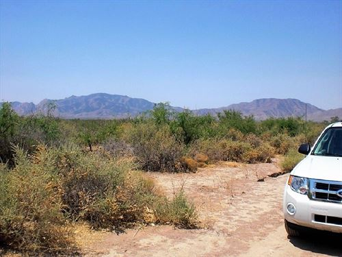 Nice Land Near Cochise Stronghold : Cochise : Arizona