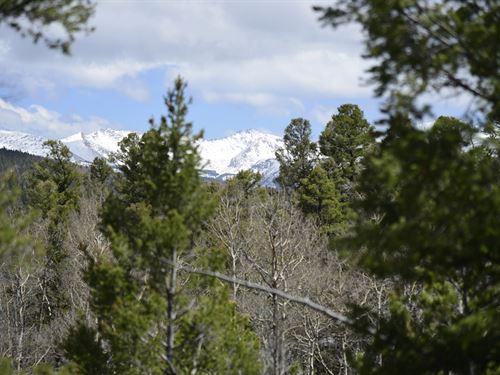 Outstanding 7.4 Acre Alpine Lot : San Luis : Costilla County : Colorado