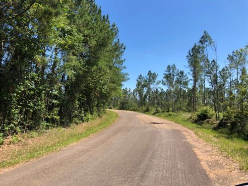3.49 Acres In Npsd : Summit : Pike County : Mississippi