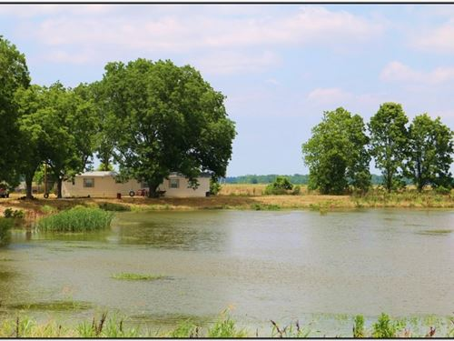 24 Acres In Humphreys County In Lou : Louise : Humphreys County : Mississippi