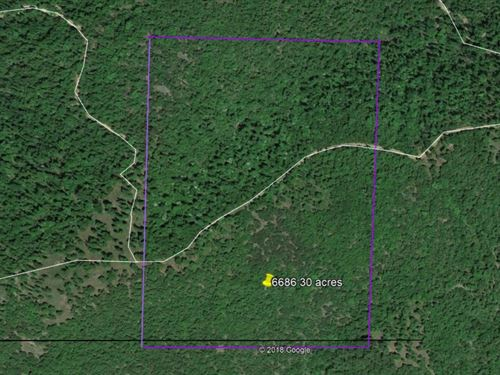 Top Of The Mountain 30 Acres : Flippin : Marion County : Arkansas