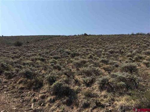 Mountain Homesite With Views : Gunnison : Colorado