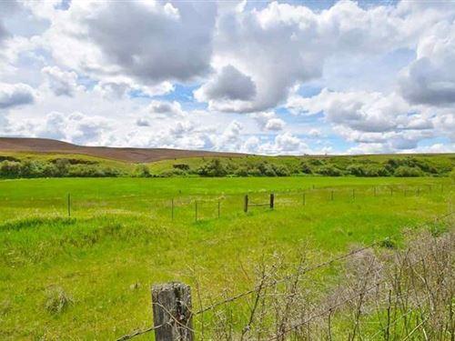 Latah, Wa, Creek Frontage, Farm : Latah : Spokane County : Washington
