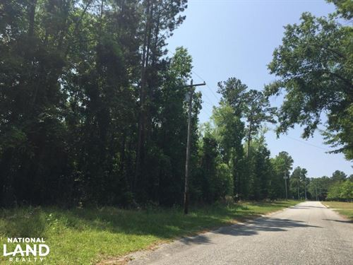 White Oak Investment Tract : Summerton : Clarendon County : South Carolina