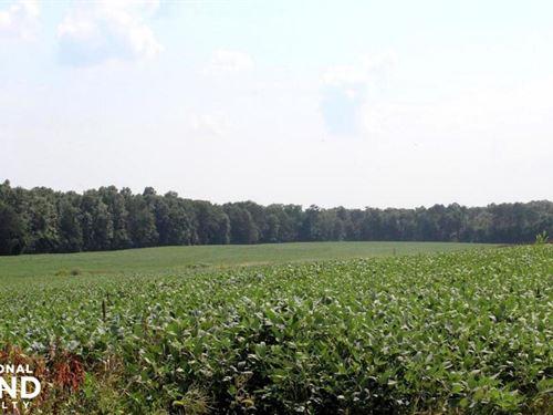 Beautiful Farmland With No Conserva : Bealeton : Fauquier County : Virginia