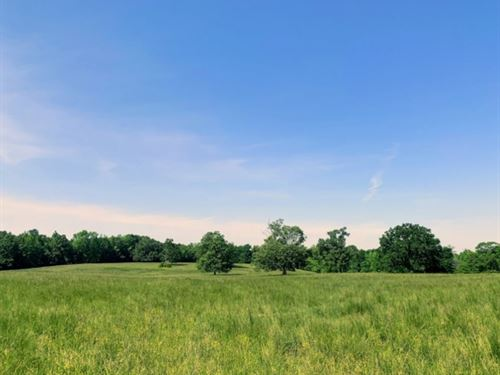 161 Acres With A Cabin In Chickasaw : Houston : Chickasaw County : Mississippi