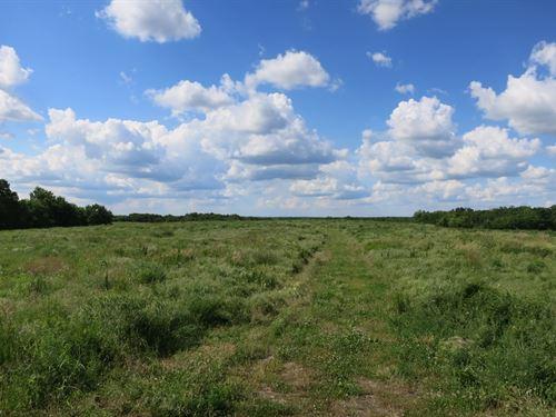Deer & Turkey Hunting Its Best : Ridgeway : Harrison County : Missouri