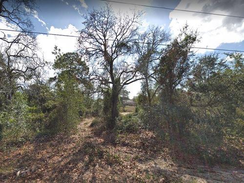 Hernando County, Fl $22,500 : Spring Hill : Hernando County : Florida