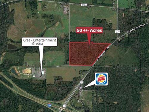 50 +/- Acres : Gretna : Gadsden County : Florida