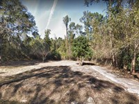 4 Lots For Sale In Jacksonville, Fl : Jacksonville : Duval County : Florida