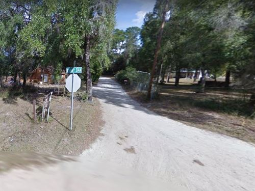 2 Lots For Sale In Silver Springs : Silver Springs : Marion County : Florida