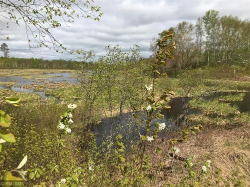 Wooded Hunting Acreage, Pond Next : Kerrick : Pine County : Minnesota