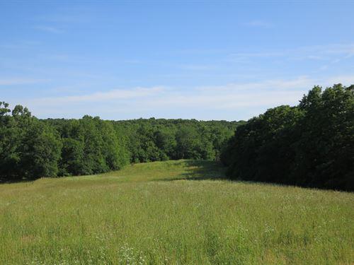 Hunting Tract in Northwest Missouri : Ridgeway : Harrison County : Missouri