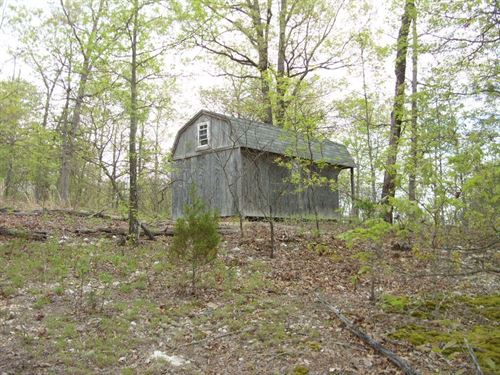 8 Mostly Wooded Acres Small 1 Room : Ironton : Iron County : Missouri
