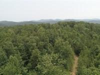 Talking Rock Piney Woods : Talking Rock : Pickens County : Georgia