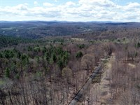 Brookfield Highlands Forest : Brookfield : Orange County : Vermont