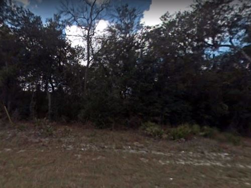 .62 Acres For Sale In Keystone Hei : Keystone Heights : Clay County : Florida