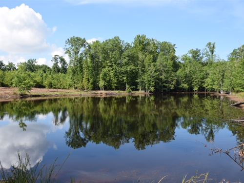 Pond Hunting Homesite : Junction City : Talbot County : Georgia