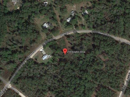 1.2 Acres For Sale In Georgetown, F : Georgetown : Putnam County : Florida