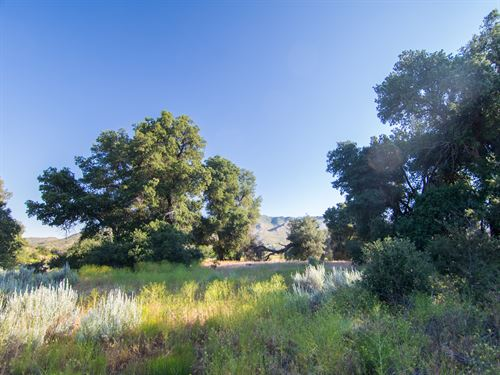Buildable Acreage In Ranchita : Ranchita : San Diego County : California