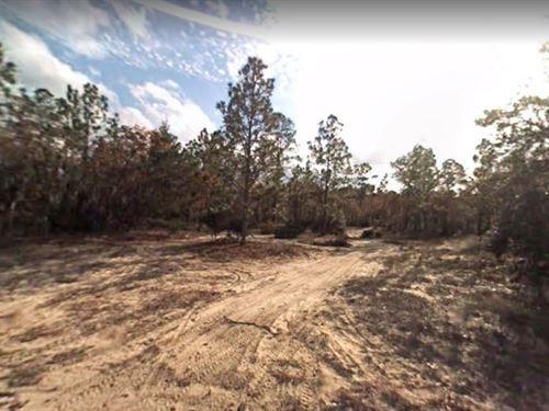 .88 Acres For Sale In Florahome : Florahome : Putnam County : Florida
