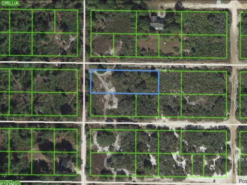 6 Lots For Sale In Avon Park, Fl : Avon Park : Highlands County : Florida