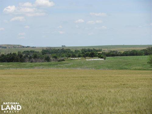 Rooks County Combo : Plainville : Rooks County : Kansas