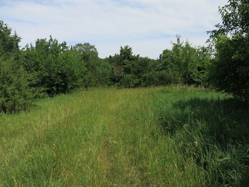 Hunting Ground in NW Missouri : Blythedale : Harrison County : Missouri