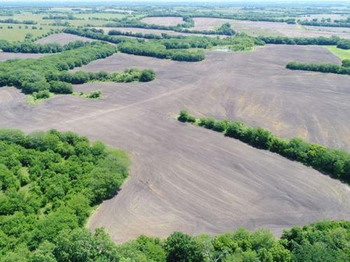 194 Acres, Row Crop & Premium Deer : King City : Gentry County : Missouri
