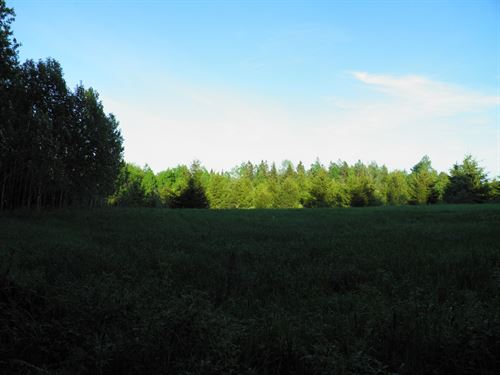 Farm Property For Sale in Maine : Hersey : Aroostook County : Maine