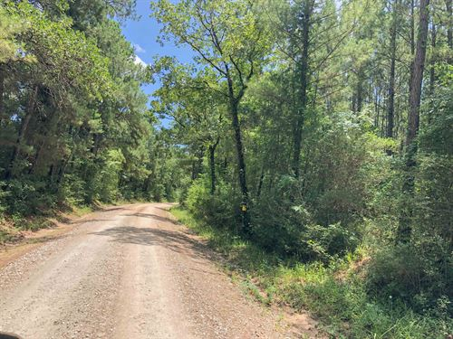 10 Acres Lost Indian Camp Road : Huntsville : Walker County : Texas