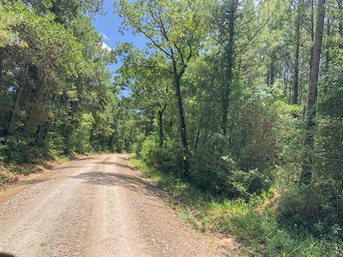 60 Acres Lost Indian Camp Road : Huntsville : Walker County : Texas