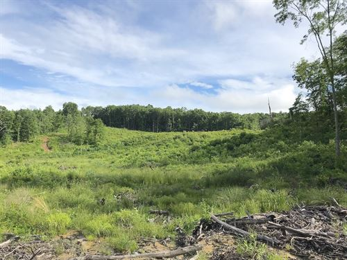 Ch & D Rd, 56 Acres : Jackson : Ohio