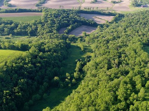 Creek Bottom Valleys & High Ridges : Blanchardville : Iowa County : Wisconsin