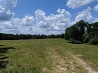 Snow Farm On Indian Creek : Bowdon : Carroll County : Georgia