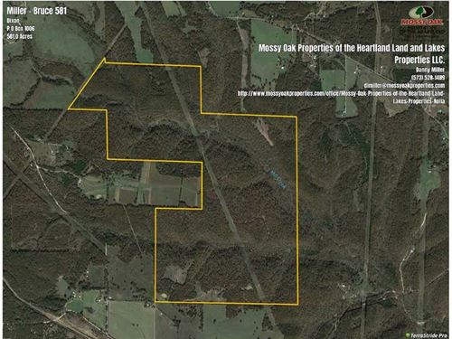 Price Reduced, Big Cavern Ranch : Dixon : Pulaski County : Missouri