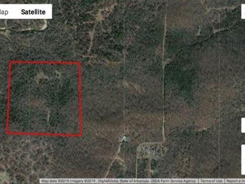 40 Acres, Mature Timber, 2 Pon : Batesville : Independence County : Arkansas
