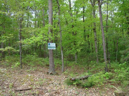 Vacant Land : Clinton : Van Buren County : Arkansas