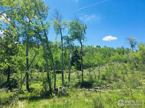 Recreational Lot Electric Sewage : Red Feather Lakes : Larimer County : Colorado