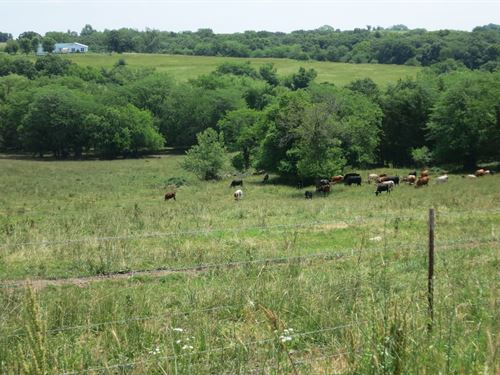 40 Acre Tract Northwest Missouri : Bethany : Harrison County : Missouri