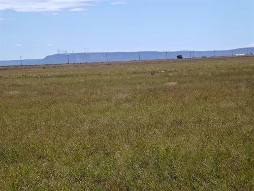 NM 904 Ac Grassland Estancia New : Estancia : Torrance County : New Mexico