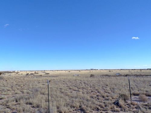 New Mexico 67 Ac Grazing Land : Estancia : Torrance County : New Mexico