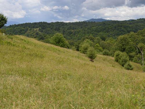 Nice Building Lot Piney Creek, NC : Piney Creek : Alleghany County : North Carolina