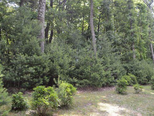 Building Lot High Meadows Roaring : Roaring Gap : Alleghany County : North Carolina