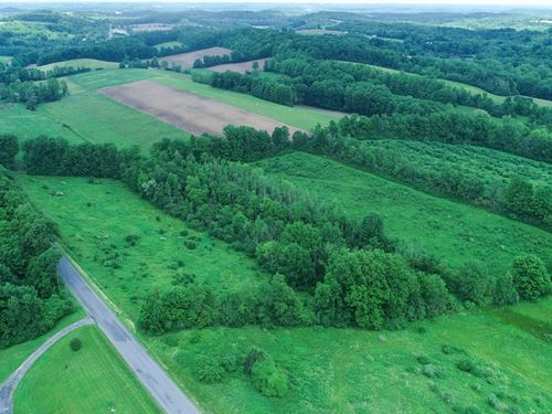 Spacious Building Lot With Woods : Auburn : Cayuga County : New York