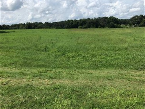 Owner Financing 5 Acres Lake Access : Brooksville : Hernando County : Florida
