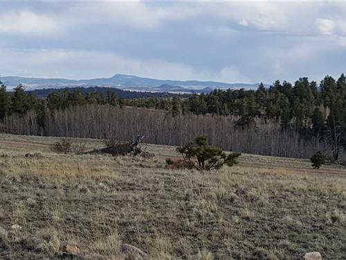 Affordable Mountain Escape, Long : Hartsel : Park County : Colorado