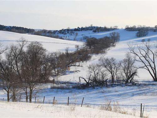 120 Acres Knox County NE Land For : Verdel : Knox County : Nebraska