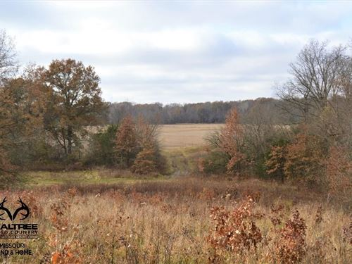 Adair County MO Recreational : Brashear : Adair County : Missouri