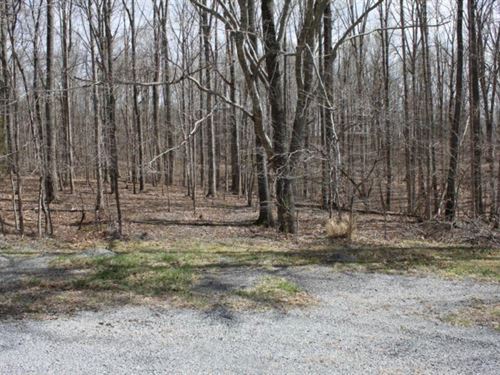 Motivated TO Sell, Nice Lot Moneta : Moneta : Bedford County : Virginia